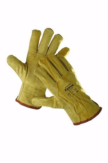 Obrázek PIGEON rukavice celokožené