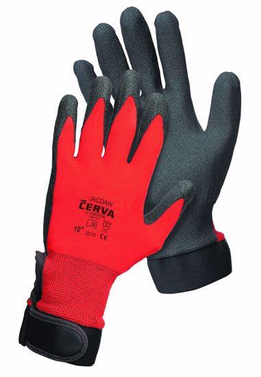 Obrázek z JACDAW rukavice