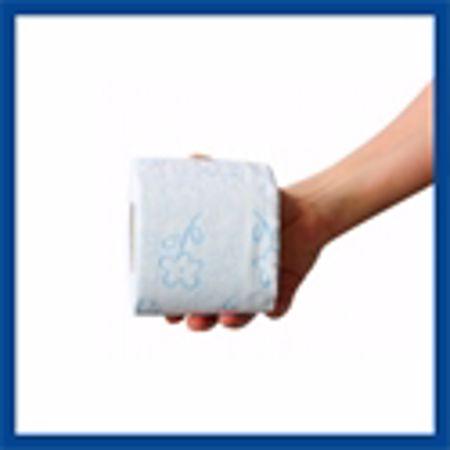 Obrázek pro kategorii na toaletní papír