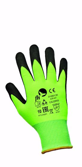 Obrázek CALIDRIS FH rukavice NFT nylon